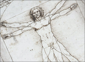 Leonardo Da Vinci's Vitruvian Man and the Golden Ratio